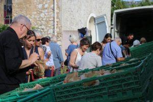 Les paniers Marseillais- (Marseille's baskets)1